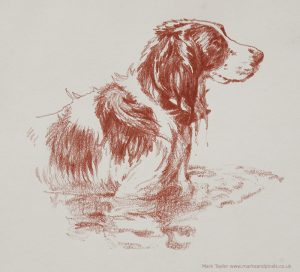 Sanguine oil drawing of Bonzo in the pond