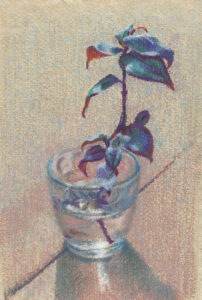 sunlit plant cutting in glass of water pastel painting
